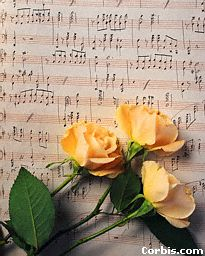 rose-music.jpg (17982 bytes)